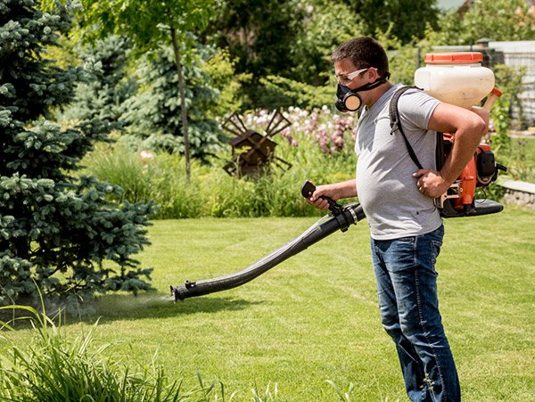 How to Permanently Kill Grass and Weeds